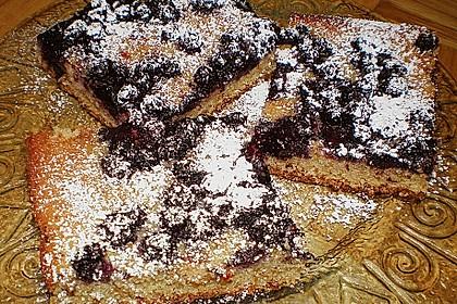 Heidelbeer - Blechkuchen 12