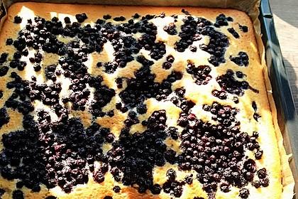 Heidelbeer - Blechkuchen