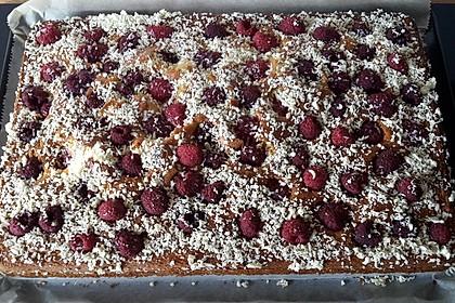 Heidelbeer - Blechkuchen 2