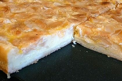 Apfelkuchen mit Sahne - Puddingguss 8