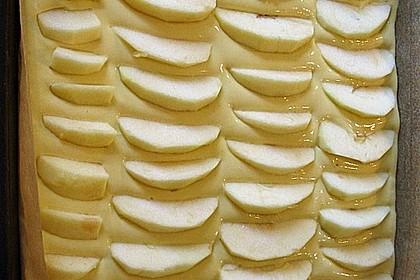 Apfelkuchen für Dummies 21