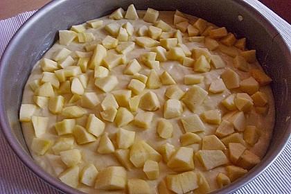 Apfelkuchen für Dummies 16
