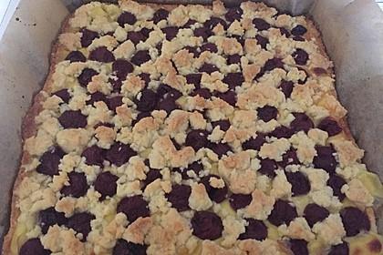Pudding-Streusel-Kuchen 17