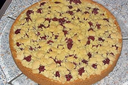 Pudding-Streusel-Kuchen 9
