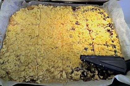 Pudding-Streusel-Kuchen 166
