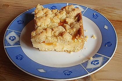Pudding-Streusel-Kuchen 64