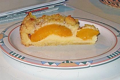 Pudding-Streusel-Kuchen 31