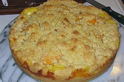 Pudding-Streusel-Kuchen 20