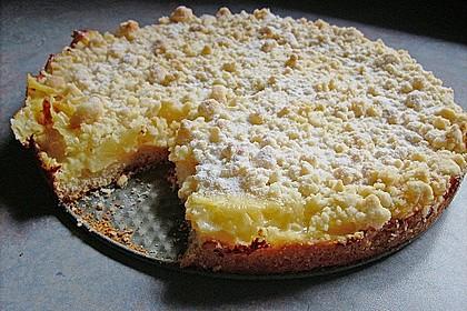 Pudding-Streusel-Kuchen 73