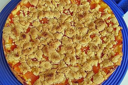 Pudding-Streusel-Kuchen 18