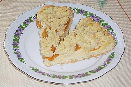 Pudding-Streusel-Kuchen 62
