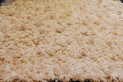 Pudding-Streusel-Kuchen 91