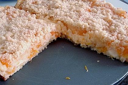 Pudding-Streusel-Kuchen 84