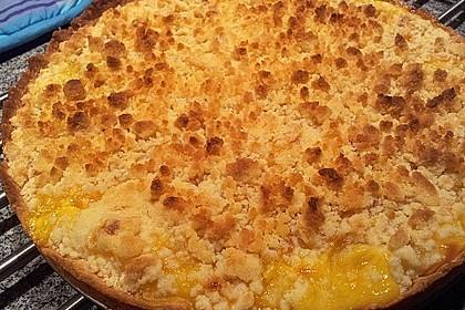 Pudding-Streusel-Kuchen 107