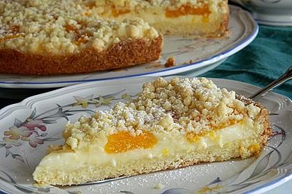 Pudding-Streusel-Kuchen 7
