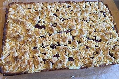 Pudding-Streusel-Kuchen 51