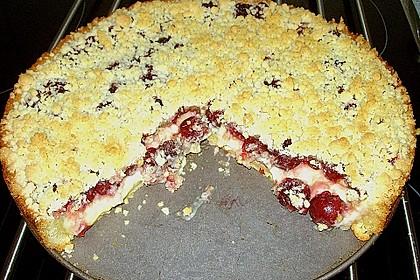 Pudding-Streusel-Kuchen 119