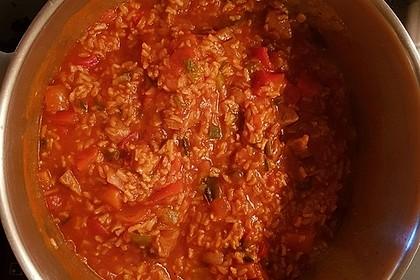 Serbisches Reisfleisch 19