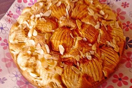 Apfelkuchen 26