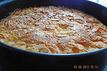 Apfelkuchen 41