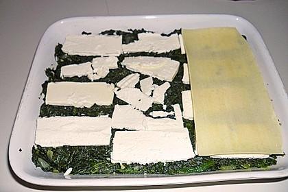 Spinat - Feta - Lasagne 13