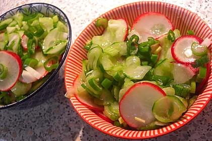 Gurkensalat mit Radieschen 4