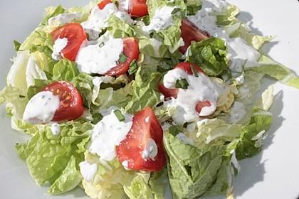 Chinakohl - Salat 7