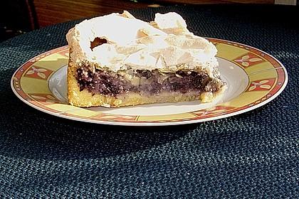 Laras Heidelbeer - Kokos - Kuchen mit Baiser 12