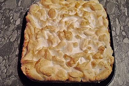 Laras Heidelbeer - Kokos - Kuchen mit Baiser 6