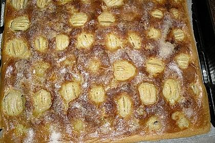 Leckerer Apfelkuchen vom Blech (Bild)