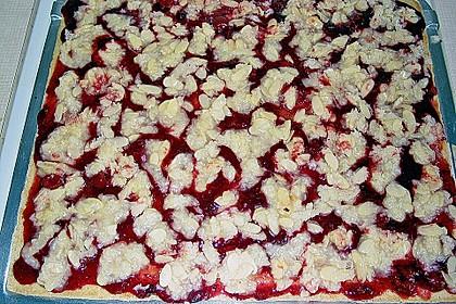 Butterkuchen mit roter Grütze 13