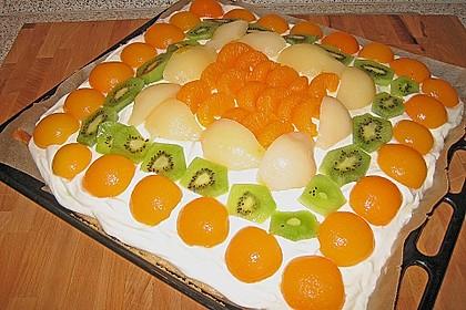 Frischkäse - Obstkuchen 11