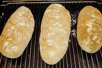 Baguette - Teig aus dem BBA 14