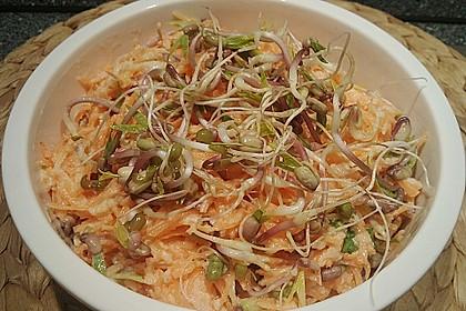 Karotten - Apfel - Rohkostsalat mit Mungobohnensprossen