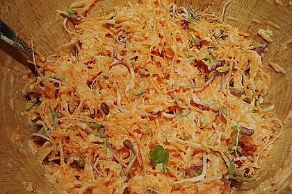 Karotten - Apfel - Rohkostsalat mit Mungobohnensprossen 1