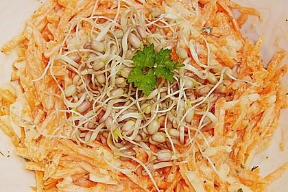 Karotten - Apfel - Rohkostsalat mit Mungobohnensprossen 3