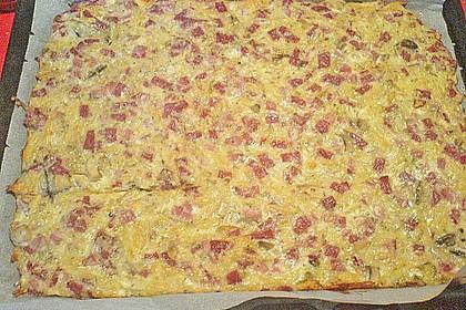 Schüttelpizza 31