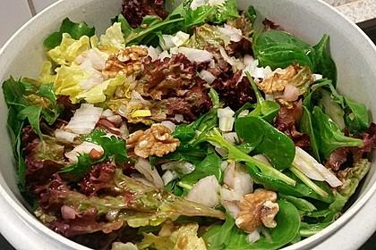 Gemischter Blattsalat mit roten Zwiebeln und Walnusskernen