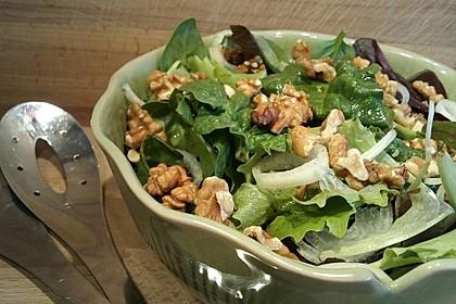 Gemischter Blattsalat mit roten Zwiebeln und Walnusskernen 3