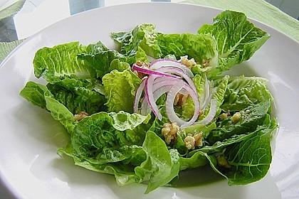 Gemischter Blattsalat mit roten Zwiebeln und Walnusskernen 6