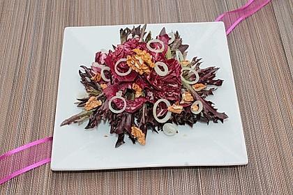 Gemischter Blattsalat mit roten Zwiebeln und Walnusskernen 4