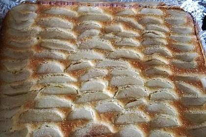 Apfelkuchen schnell und fein 120