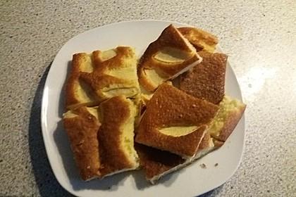 Apfelkuchen schnell und fein 172