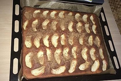 Apfelkuchen schnell und fein 119