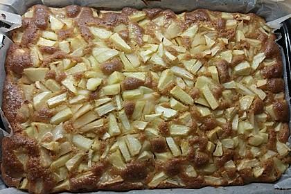 Apfelkuchen schnell und fein 68