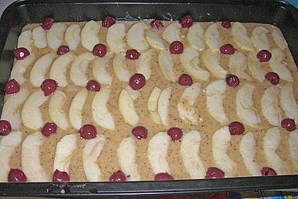 Apfelkuchen schnell und fein 205