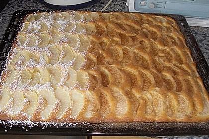 Apfelkuchen schnell und fein 180