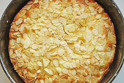 Apfelkuchen schnell und fein 97