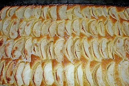 Apfelkuchen schnell und fein 53
