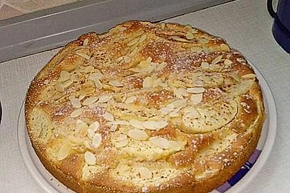 Apfelkuchen schnell und fein 95